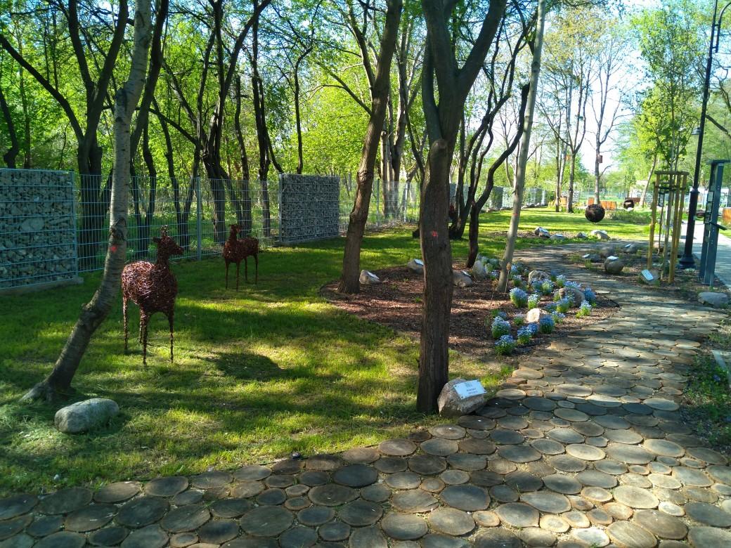 Ogród Botaniczny w Brwinowie